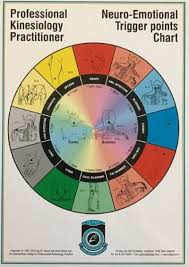 Kinesiology Emotion Chart Pkp Neuro Emotional Points Chart
