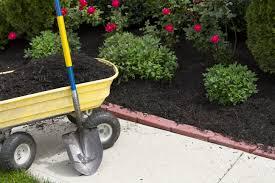Garden Centre Kitchener Enhanced Black Bark Dirt Cheap Kitchener