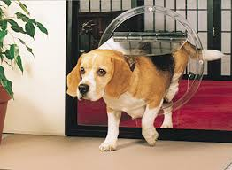 dog doors for sliding glass doors. Jim\u0027s Glass Supply And Install Pet Doors That Are Specifically Designed To Be Fitted Into Glass. Whether It A Sliding Door, Hinged Dog For G