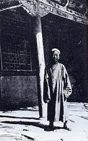 Wang Yuanlu - Wikidata