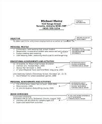 Pet Sitter Resume Babysitter Resume Skills Pet Sitter Resume Awesome