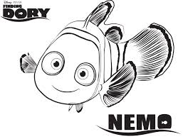 Small Picture Finding Dory Coloring Pages Free Printable Coloring Pages