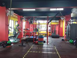 Gold S Gym Gs 2500 Exercise Chart Top Ladies Gym In Zoo Road Guwahati Best Womens Gym