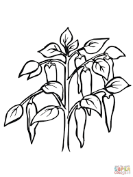 Small Picture Coloring Pages E And Plant Coloring Pages For Kids Printable Free