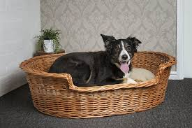 wicker dog bed.  Bed To Wicker Dog Bed