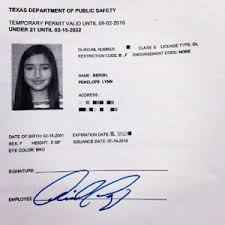 License Paper Texas Templates Station Template 141699 - Drivers Temporary