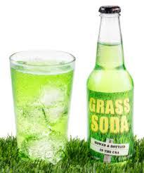 Grass Border Grass Soda Grassmaster Solutions Grass Soda Unique Sweet Drink Flavored Like Freshcut Grass