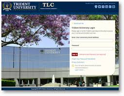 Login International Student University Trident