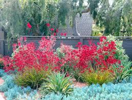 Mediterranean Garden Design Simple Mediterranean Garden
