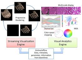 Visual Analytics Bnl Dynamic Visualization And Visual Analytics For