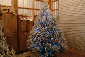 indoor christmas lighting. Light White Christmas Tree Indoor Outdoor Lighting C