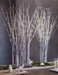 Lighted Birch Tree Forest