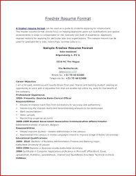 Professional Achievement Examples Achievements On Resume Spacesheep Co