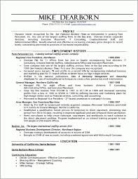 Executive Hybrid Resume Template | Best Resume Examples