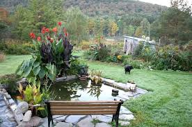 Small Picture Outdoor Garden Astonishing Backyard Garden Design With Cool