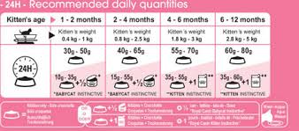 Kitten Feeding Chart Kitten Weight And Feeding Chart Kitten Age Weight Chart