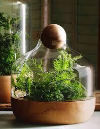 Glass Container Terrariums ~. {Source Pop Deluxe  $159}