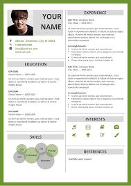 Resume Template Microsoft Word Classy Fitzroy Modern Border Resume Template
