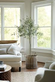 Natural Color Living Room 1000 Ideas About Natural Indoor Furniture On Pinterest Bamboo