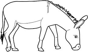 Small Picture Donkey Eating Grass Colouring Page Fun Colouring