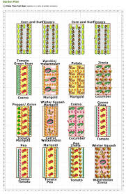 flower garden plans. The Multi-Bed Garden Plan Flower Plans