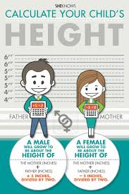 Many Factors Influence Adult Height Children Kids