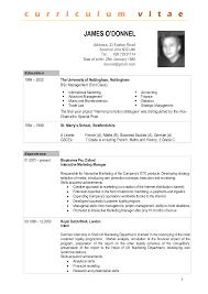 Gallery Of Sample Curriculum Vitae Format Free Samples Examples