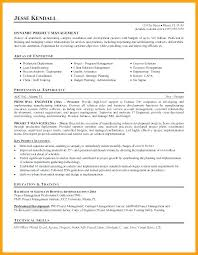 Modern Resume Template Cnet Cv Example Senior Project Manager Resume Template For Business