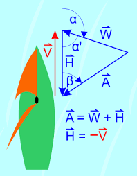Sailing Wind Chart Apparent Wind Wikipedia
