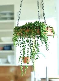 indoor hanging baskets wall hanging planters hanging plant baskets indoor hanging baskets on wall hanging plant wall hanging planters indoor hanging baskets