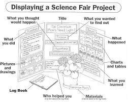 How To Make A Chart For A Science Fair Project Science Fair Mr Gerharts Fabulous Fourth Graders Mill