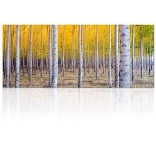 birch tree wall art yellow