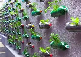 urban garden urban garden ideas urban garden supply flint mi