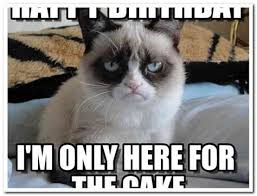grumpy cat birthday bird. Delighful Cat Grumpy Cat Meme Happy Birthday 28 Images Funny For Grumpy Cat Birthday Bird D