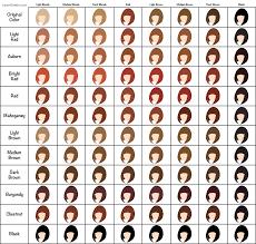 Henna Hair Dye Color Chart Hair Chart Henna Hair Dyes