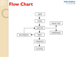 Software Testing Defect Bug Life Cycle Complete Flow