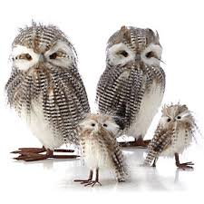 Owl Home Decor Accessories Amazing Striped Owl Set Of 32 Objects Of Art Decor Z Gallerie
