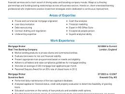 Real Estate Property Manager Resume Sample Commercial Developer ...