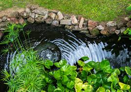 the diffe types of backyard ponds