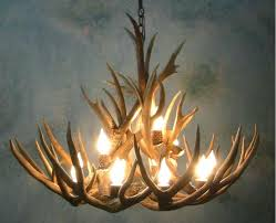 staggering real elk antler chandelier photo inspirations