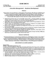 Executive Director Resume Template