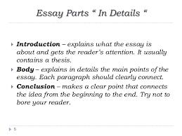 writing an academic essay essay