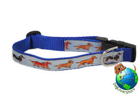 dachshund dog breed adjule nylon collar um 10 16 blue
