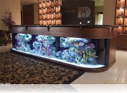 office aquarium. Photo 2 Of 8 Office Desk Fish Tank. (marvelous Aquarium For #2)
