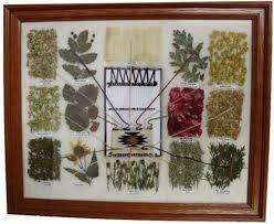 Navajo Dye Chart Navajo Dye Chart16x20
