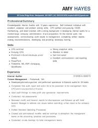 Internal Auditor Resume Objective Internal Auditor Resume TGAM COVER LETTER 37