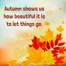 Beautiful Autumn Quotes Best of Autumn Shows Us How Beautiful It Is To Let Things Go Tiny Buddha