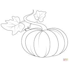 pumpkin drawing. výsledek obrázku pro fall pumpkin drawing p