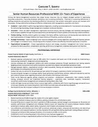 Talent Acquisition Manager Resume Sample New Change Management