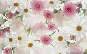 Free Download Wallpaper For Pc Flowers ...